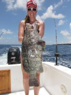 Leather Grouper
