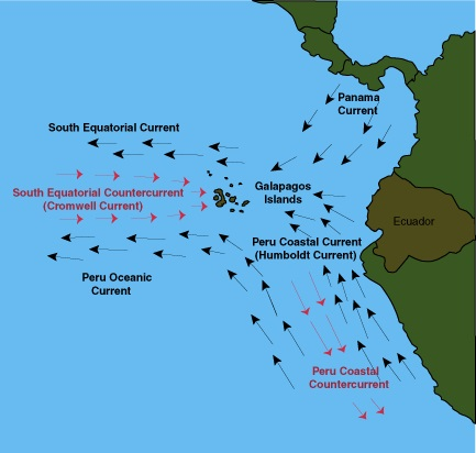 Galapagos Currents